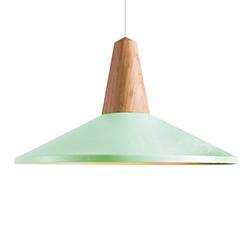 Image: Eider Shell Pendant Light Green
